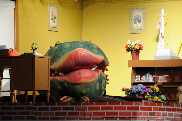 MHS Drama Club - Little Shop of Horrors