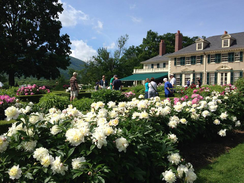 large home with people milling about the peony display