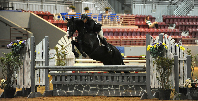 Horse show (49).jpg
