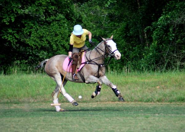 Carrollton Polo Club - 4-25-2012