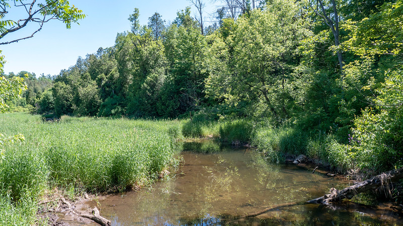 Ontario-Limehouse-Conservation-Area24.jpg