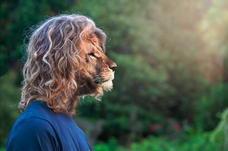 Lion David-Edit.jpg
