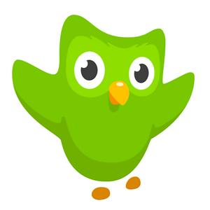Duolingo App Icon