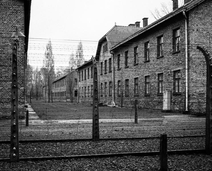 Auschwitz-Birkenau-13.jpg