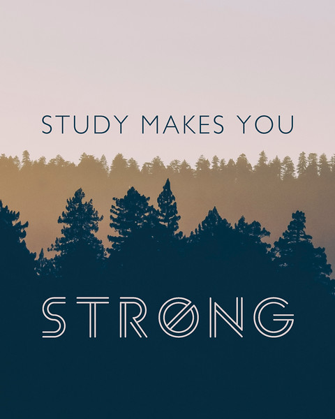 Study Makes You Strong 02.jpg