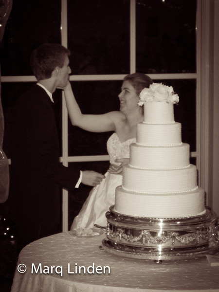 Travis and Emily Williams Wedding 120812082012-117.jpg