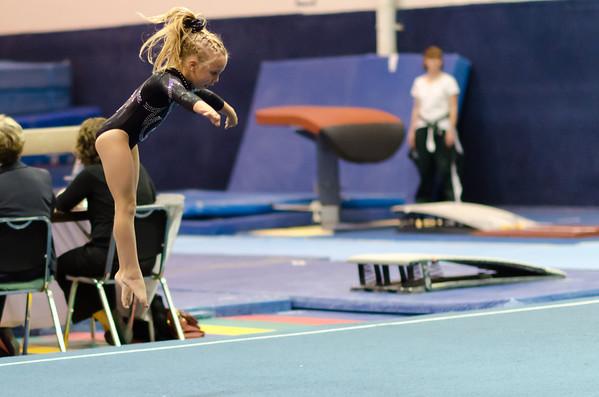 2011 Gymnastics Meet Peak Level 5