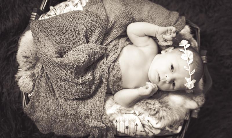 Newborns 03-25-2018-6.jpg