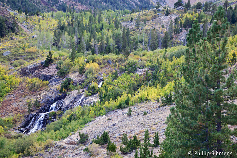 Lower Falls on Mill Creek in Lundy Canyon