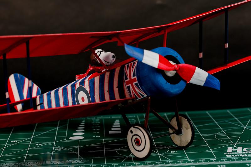 RC-Sopwith-Pup-75.jpg