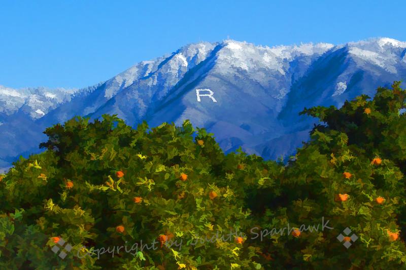 Redlands R