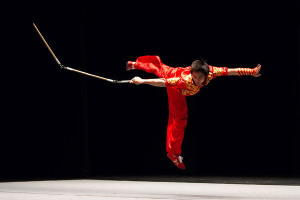 Beijing Wushu Team Performance