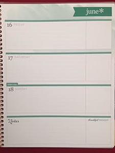 Weekly Planner by Erin Condren