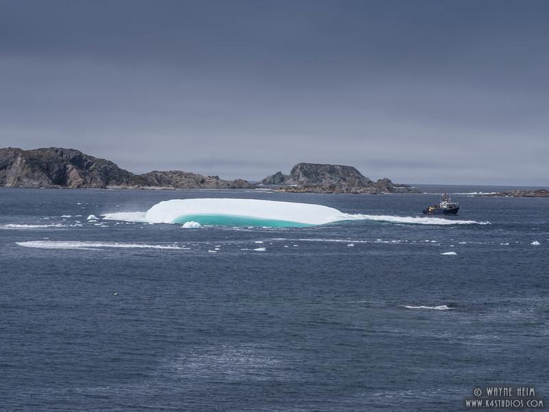 Iceberg 68e    Photography by Wayne Heim