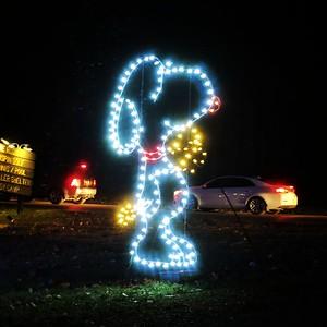 Oglebay Festival of Lights - Wheeling, WV - 16 Dec. '17