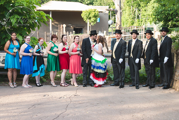 Don and Sara's Wedding