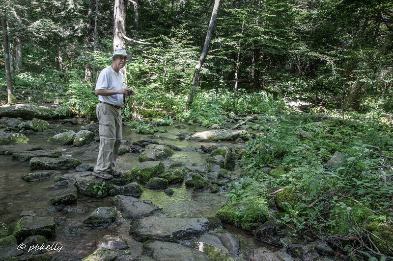Art, one of the hike leaders, checking out a stream crossing.