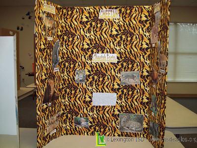 2008-2009 LES 5th Grade Science Fair