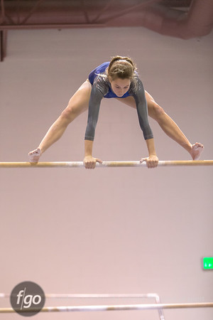 12-9-15 Minneapolis Henry-Edison and Washburn and St. Paul Highland Park and Johnson Gymnastics