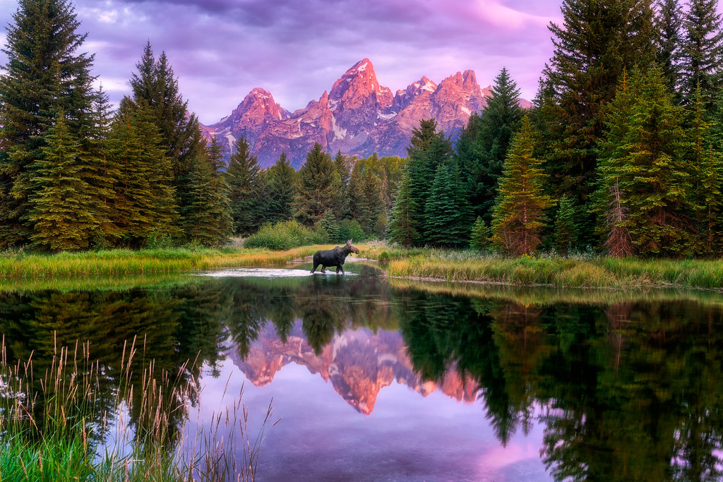 Schwabacher Landing Grand Teton National Park Wyoming