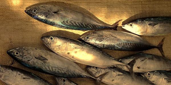 Вспоминая голландцев. Рыбный рынок. Фотоальбом - Валерий Гаркалн