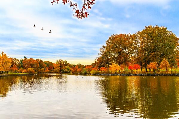Autumn2013