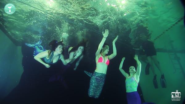 Ditcham Park School  - Underwater Portraiture Workshop