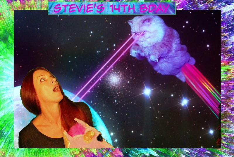 Stevies Party (29).jpg