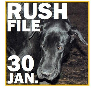 30 JAN. RUSH FILE