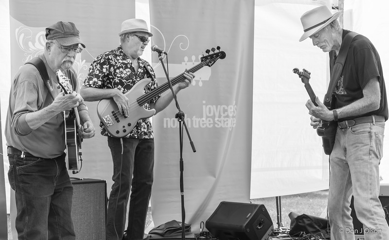Minnesota Barking Ducks--2017 Rock Bend Folk Festival-St. Peter, MN.