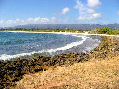 Kahuku Beach walk Adventure, North Shore of O'ahu
