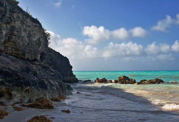 Bermudiana