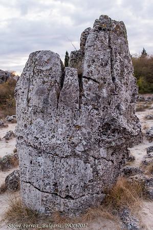 Stone Desert in Varna
