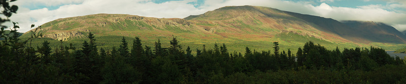 Tablelands near Trout River pond - Gros Morne Nat'l park