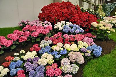 Gentse Floraliën 2010