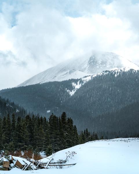 Breck Tiger Road -1.jpg