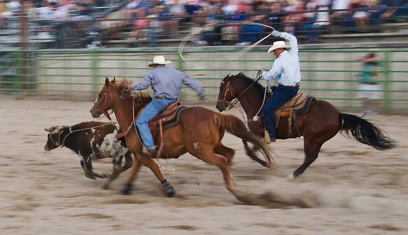 Rodeo roping.jpg
