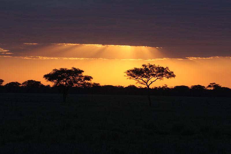Africa October 2007  (3346).JPG