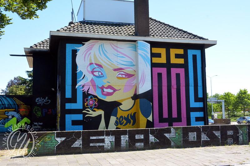 20180702 Berekuil Graffiti Eindhoven GVW_1495.JPG