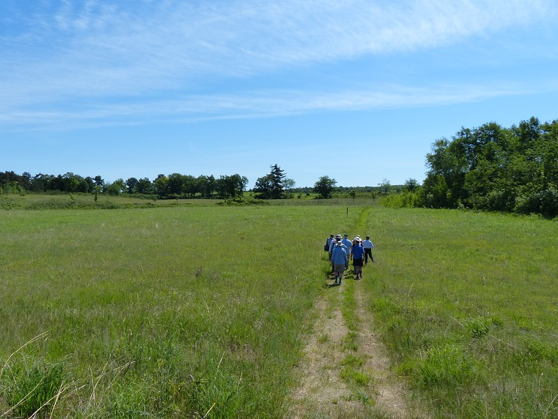 WBFN members walking the trail through tallgrass prairie
