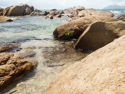 A splash of green surviving in the clear sea amongst the boulders.