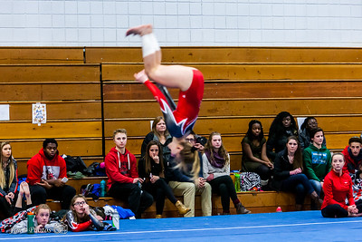 HS Sports - Sun Prairie Gymnastics - Jan 28, 2016