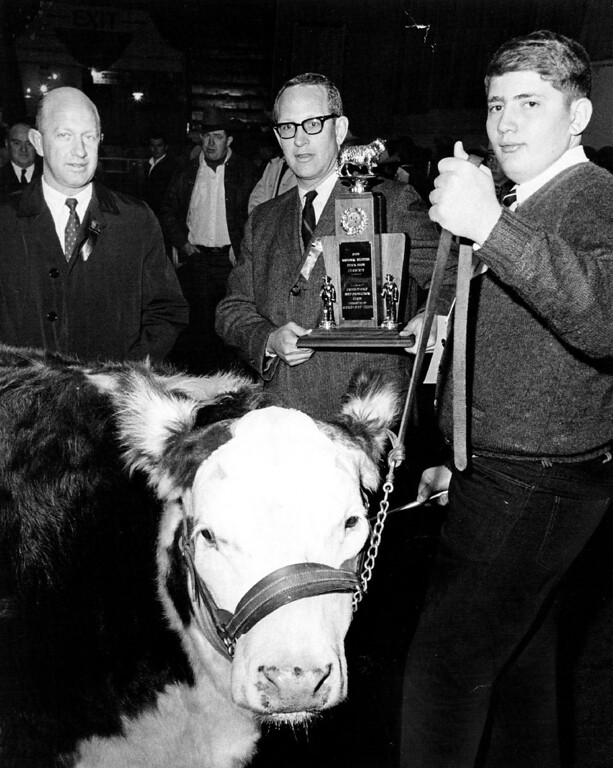 ". Stock Show. At left is J. Rodney Uhrich, vice president of the calf\'s sponsoring group, First National Bank of Denver. David Arndt. 15, of Weldona, Colo., shows ""Cash,\"" which won him the Catch-It Steer Contest  at the National Western. 1968. Bill Peters, The Denver Post  Credit: Denver Post"