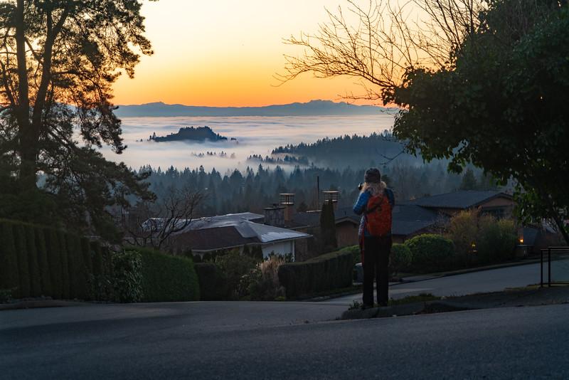 19_01_14 january fog 0041-HDR.jpg