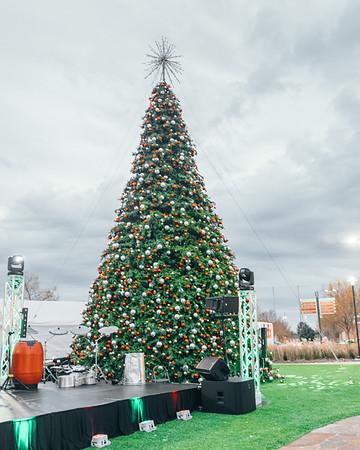 11.29.19 Christmas Tree Lighting