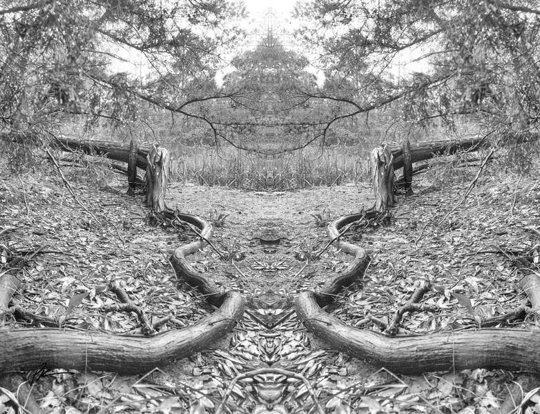0568-Edit-2-Edit.jpg