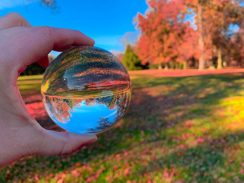 fall colors lens ball