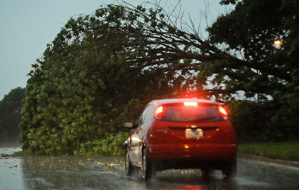 . A road is blocked by a fallen tree in Northeast Minneapolis. (Pioneer Press: Ben Garvin)
