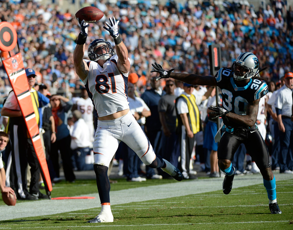 . Denver Broncos tight end Joel Dreessen (81) catches a pass on Carolina Panthers strong safety Charles Godfrey (30) during the third quarter Sunday, November 12, 2012 at Bank of America Stadium.  John Leyba, The Denver Post