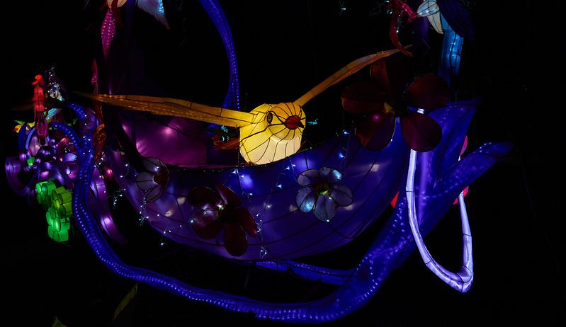 Botanical Gardens Lantern Show